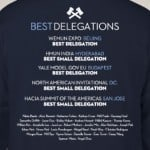 How We Won 5 Straight Delegation Awards