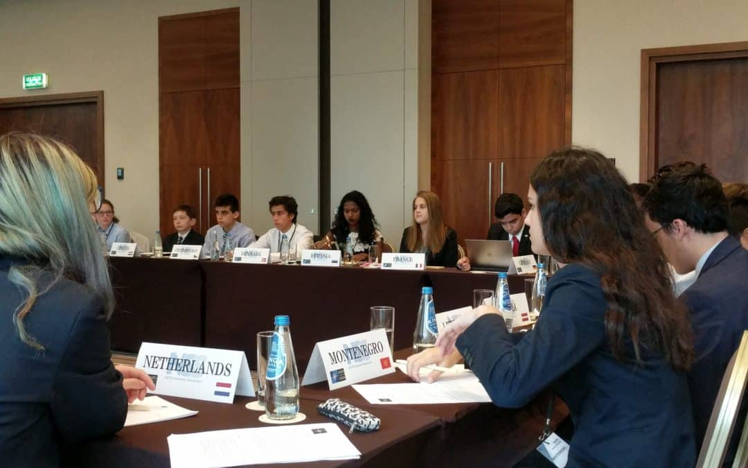 Model UN is Not Just for Humanities Students
